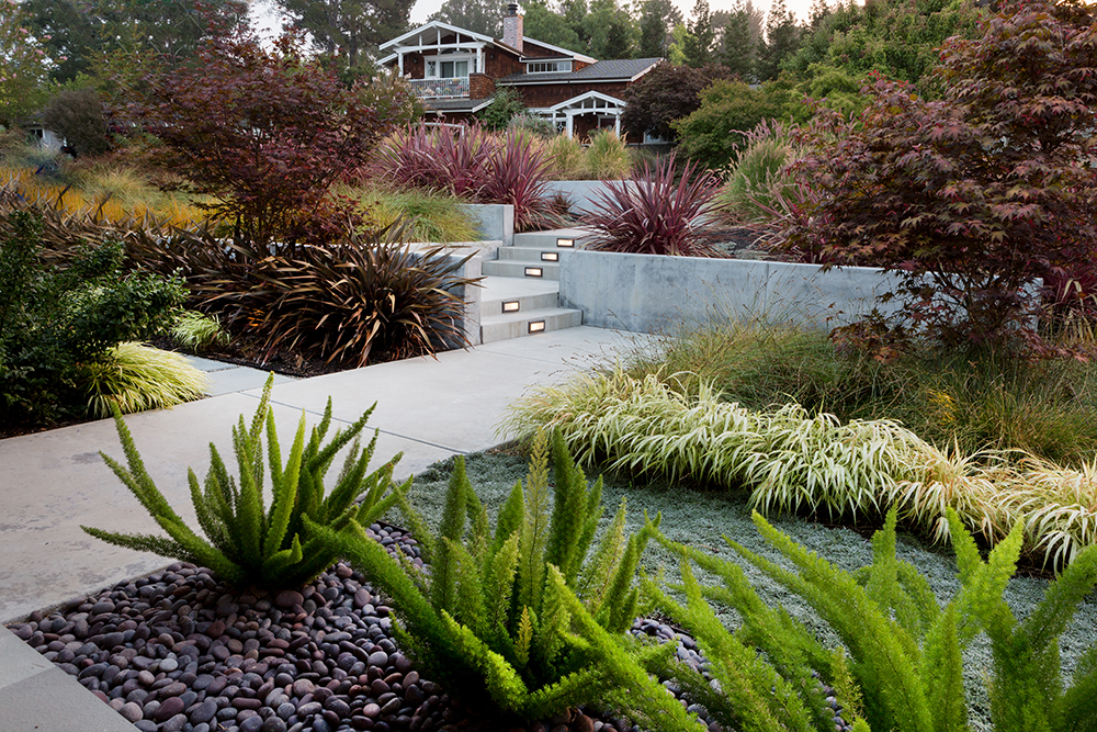 Sue Oda Landscape Architect